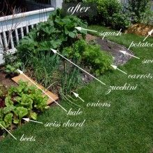 landscaping design ideas for preppers begin prepping now