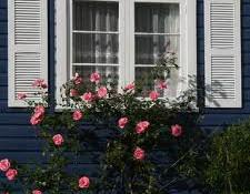 rose-window-defense