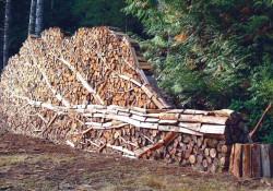 fun firewood