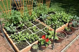 squarefoot garden