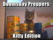 prepper kitty